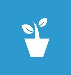Houseplant icon white on the blue background vector