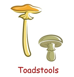 Cartoon isolated toadstools vector image