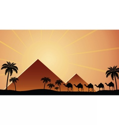 Egyptian pyramids at sunset vector image