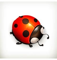 Ladybug icon vector image vector image