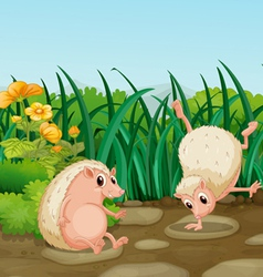 Two wild animals near the weeds vector image vector image