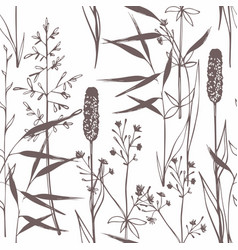 wildflowers seamless gentle pattern on a white vector image vector image
