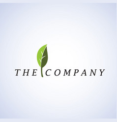 Leaf logo ideas design on background vector