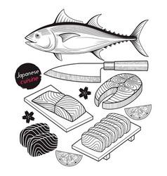 salmon fish meat japan food doodle elements vector image