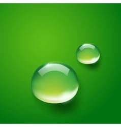 water drop on green vector image