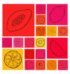 Doodle exotic and tropical products set vector