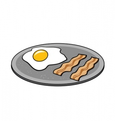 Bacon eggs vector