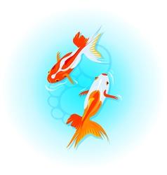 Japanese goldfishes vector image