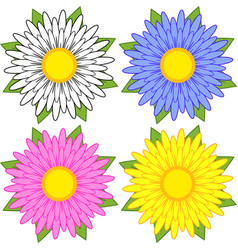Set of white blue pink yellow flowers on a vector