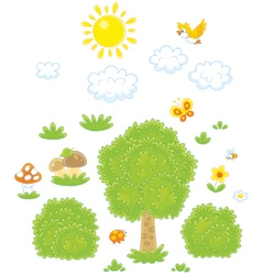 Objects for a woodland scenery vector image vector image