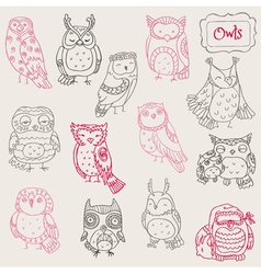 Various Owl Doodle Collection vector image