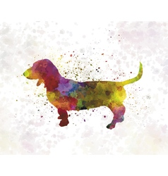 Artesian norman basset in watercolor vector