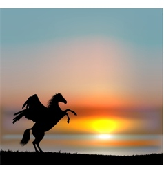 Pegasus on sunset sky vector