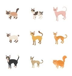 Kitty icons set cartoon style vector