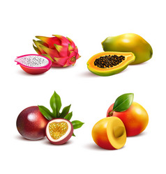 Mature tropical fruits set vector