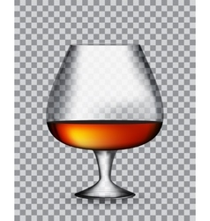 Glass collector 50 year-old french cognac on vector