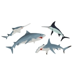 Set fish sea animal vector