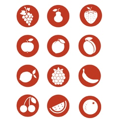 Fruits pictogram vector