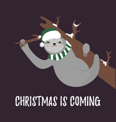 christmas card with cute sloth wearing hat scarf vector image