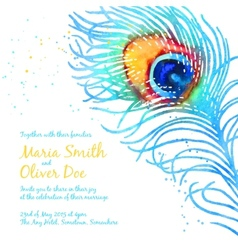Elegant background with watercolor peacock vector image