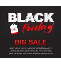Posters Black Friday sale vector image vector image