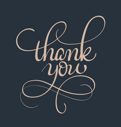 thank you text calligraphy lettering vector image
