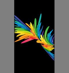 abstract multicolor splash on black vector image vector image