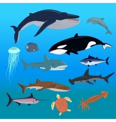 Marine fauna set of aquatic animals vector