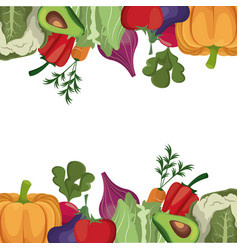 vegetables fresh ingredients poster vector image