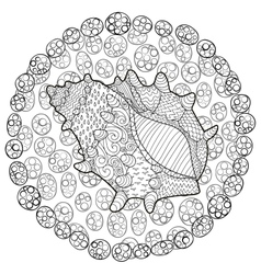 Seashell with high details vector