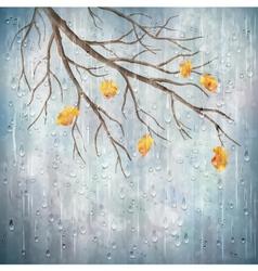 Autumn season rain weather tree branch design vector image vector image