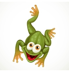 Cute green cartoon frog crawling on a white vector