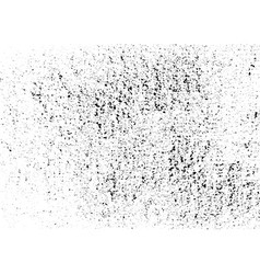 Dust texture white and black Grunge vector image vector image