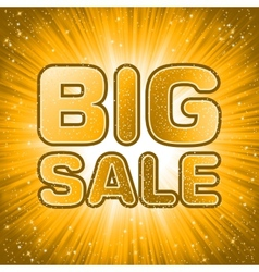 Big sale message EPS 8 vector image