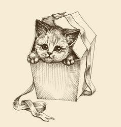 Gifting a pet cute curious cat vector