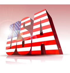 3d usa text vector image vector image