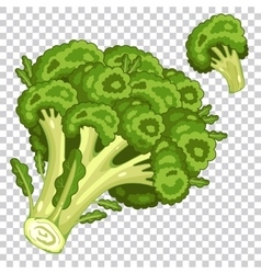 Broccoli isolated organic food farm food vector