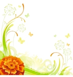 Floral summer background with orange marigold vector image vector image