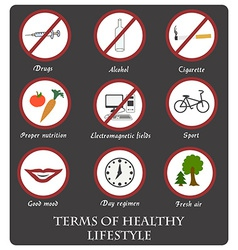 Infographics rules of healthy lifestyles vector