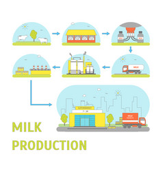 milk production process vector image