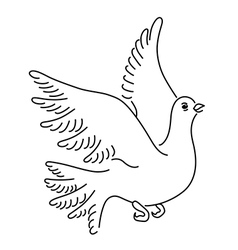 Soaring dove vector