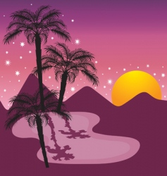 midnight at the oasis vector image vector image