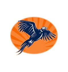 Pheasant bird flying up with sunburst vector