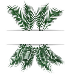 tropical dark green palm leaves place for vector image vector image