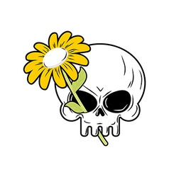 Skull and chamomile white flower and death head of vector