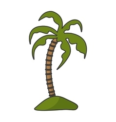 Isolated palm tree vector