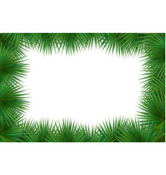 Colorful naturalistic frame from the leaf palm vector