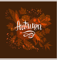 Fall brown background vector