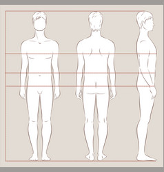 Mens body measurements vector