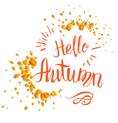 Fall leaves lettering vector